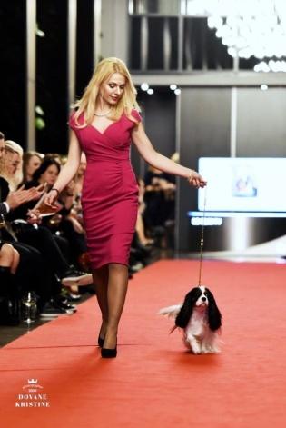 Amber Dog Calendar 2017 prezentācija, Vita Laicāne