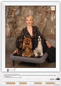 Amber Dog Calendar 2017, Vita Laicāne